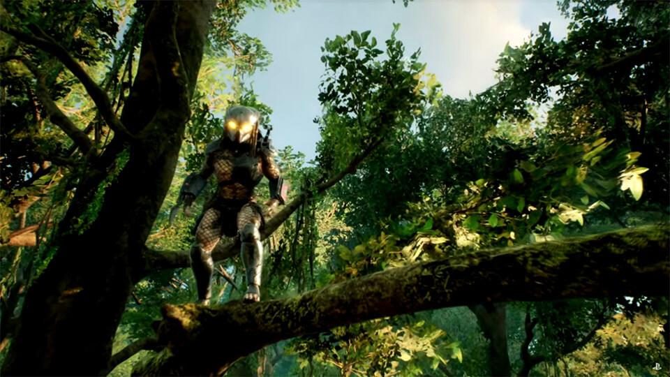 Predator Hunting Grounds data vyhoda